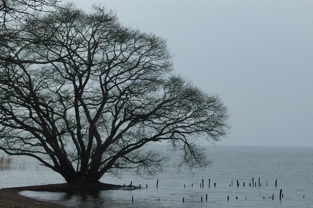 琵琶湖1.JPG