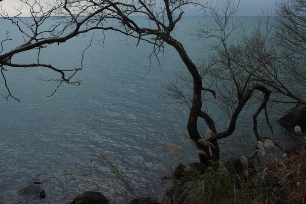 琵琶湖2.JPG